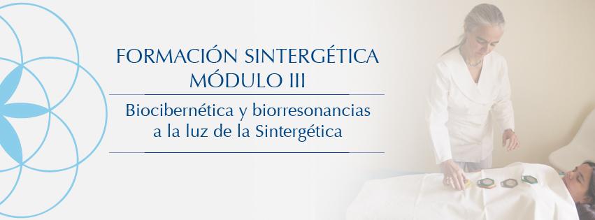 Sintergetica_III