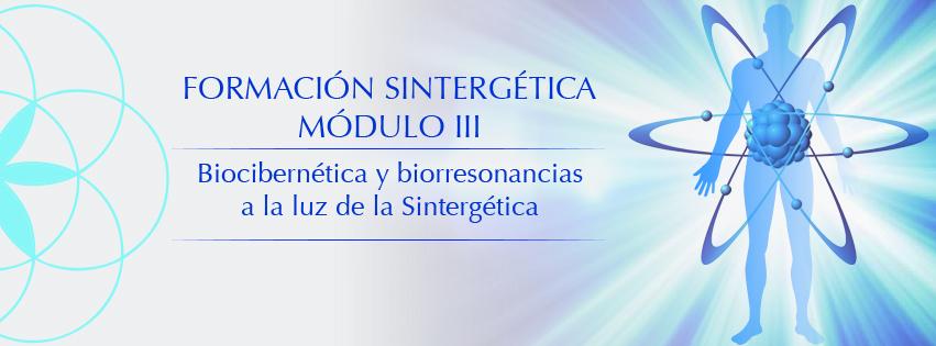 Sintergetica_mod_III